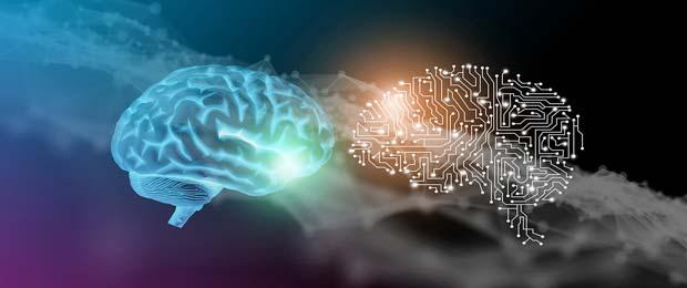 Intelligence artificielle : deux nouvelles chaires dans les domaines de la surveillance des océans et de la santé